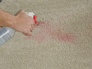 Carpet Cleaning Myths to Move Past in 2017