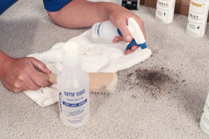 Extending the Life of Your Carpet