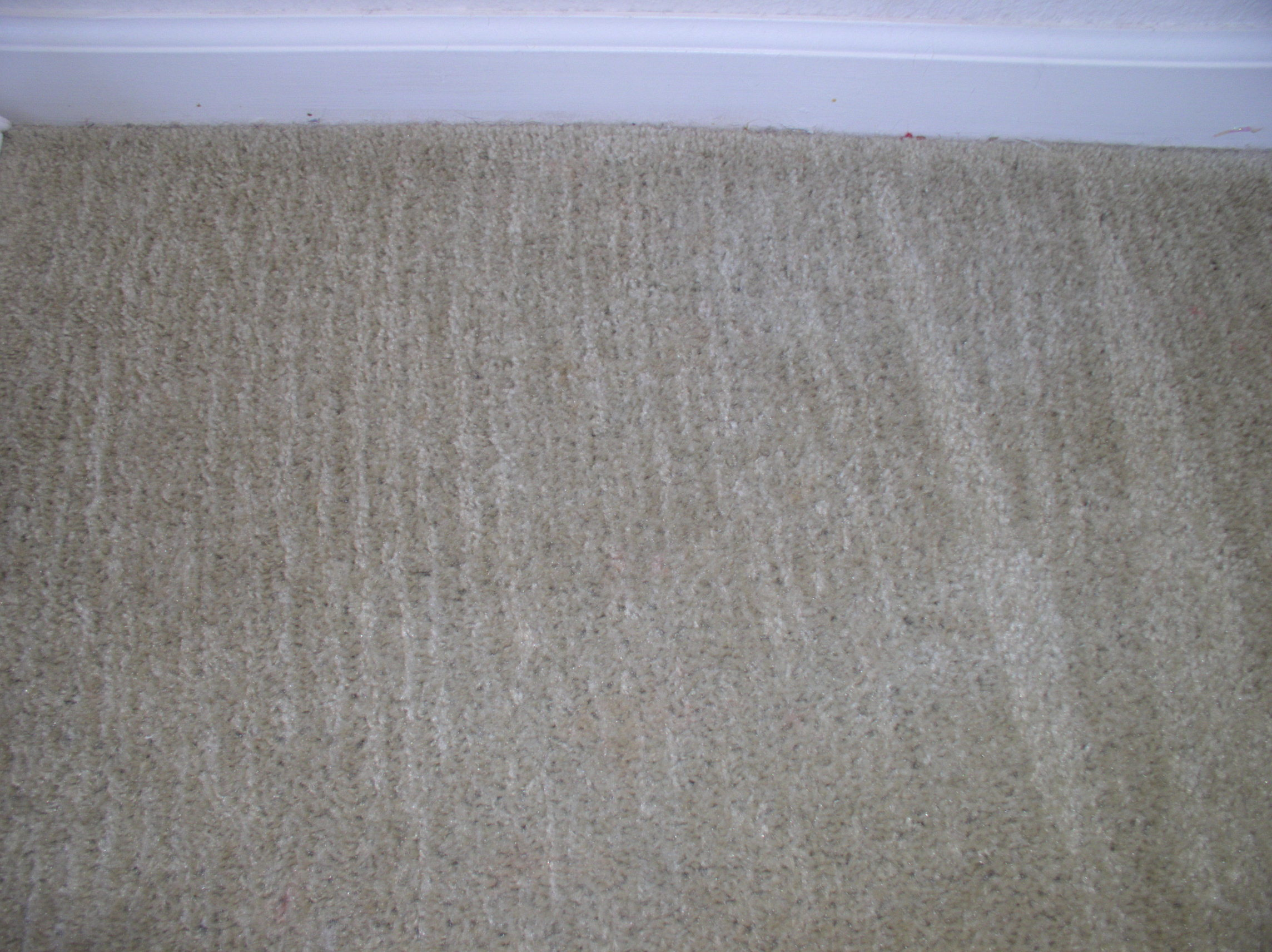 Spot/Stain Removal u2022 Sams Carpet Cleaning in St. Louis and ...