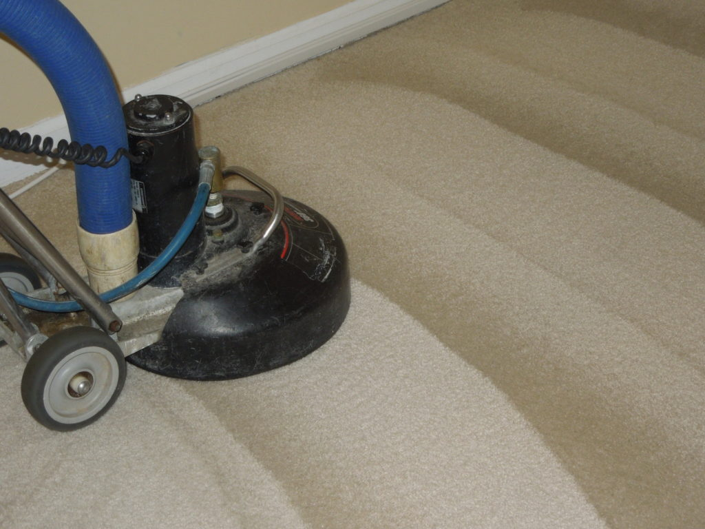 deep carpet cleaning rotary extraction