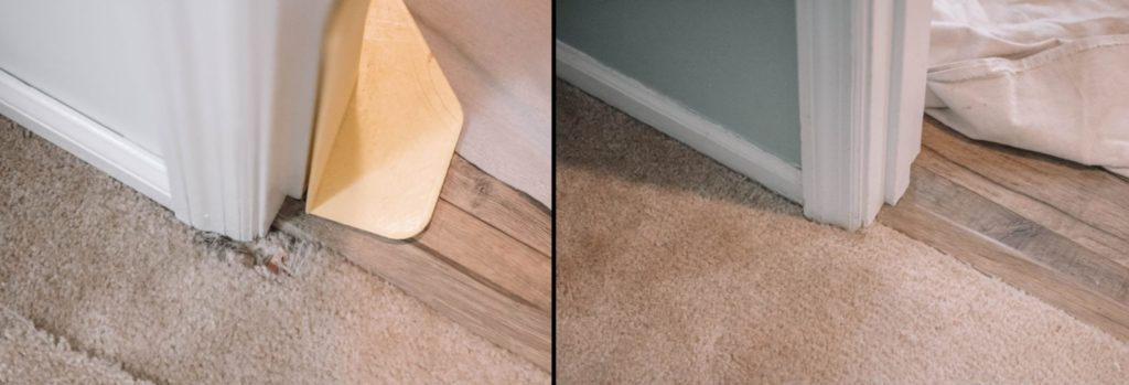 Before and after repair photos of carpet damaged by pets