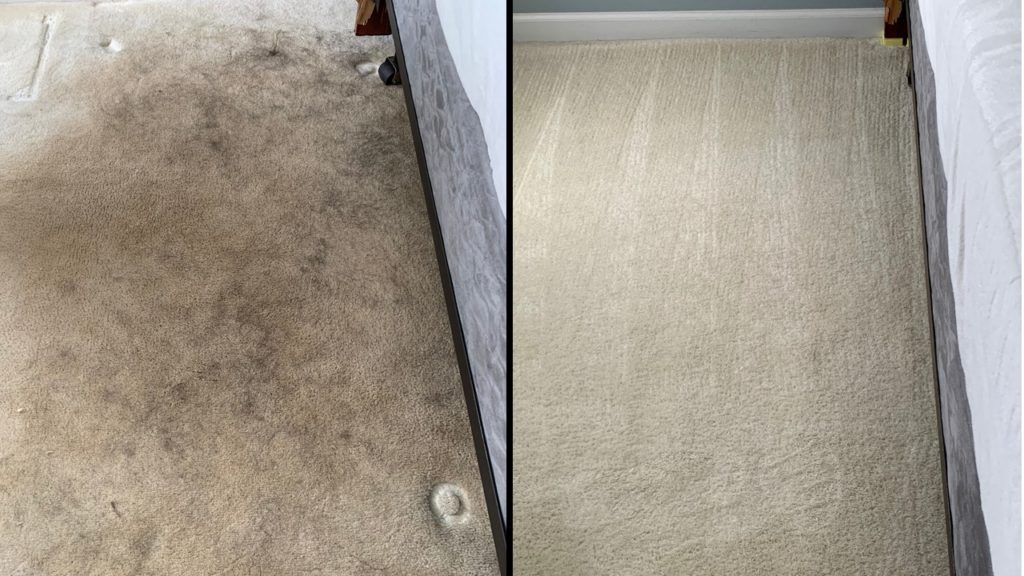 Before and after photos of carpet damaged with pet hair and oils